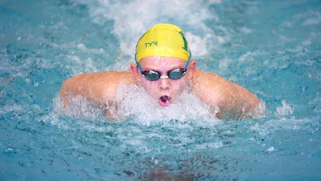 Flat Rock's Lauren McNamara placed third in the butterfly and 12th in the individual medley at the Division 3 state finals as a freshman..