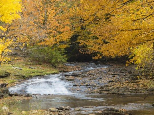 Roaring Branch River in Arlington.