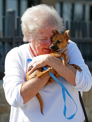 Diana Lepsch holds rescued dog Lucky, a 4-month-old Chihuahua mix, on Wednesday, March 8, 2017 at the Carrollton Animal Adoption Center in Carrollton, Texas. (Jae S. Lee/Dallas Morning News/TNS)HFA WEB NO MAGAZINE SALES MANDATORY CREDIT; NO SALES; INTERNET USE BY TNS CONTRIBUTORS ONLY