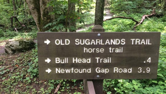 A woman fell to her death at Newfound Gap in Great