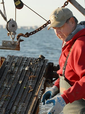 A clammer dredges for clams in Assawoman Bay near Ocean City, Maryland, in 2008.