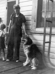 Despite being known throughout the country, photos of Shep are relatively rare. This one is the only photo collected by the Overholser Historical Research Center that shows Shep being petted.