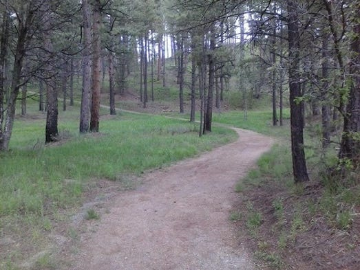 The Lincoln National Forest is public land, where everyone