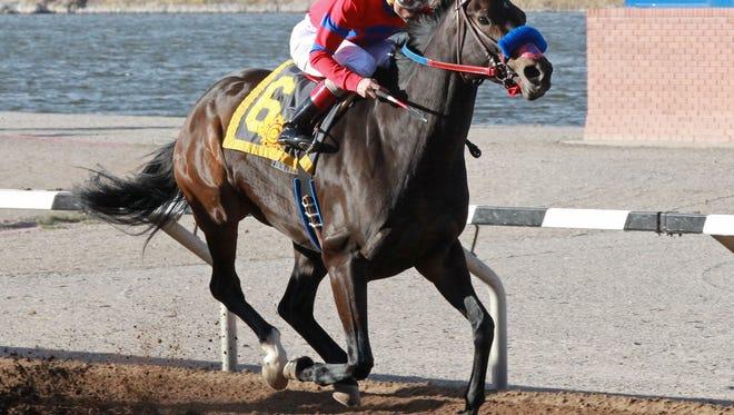 K P Wildcat will go for her 11th career win in Sunday's Harry W. Henson Handicap at Sunland Park Racetrack & Casino.