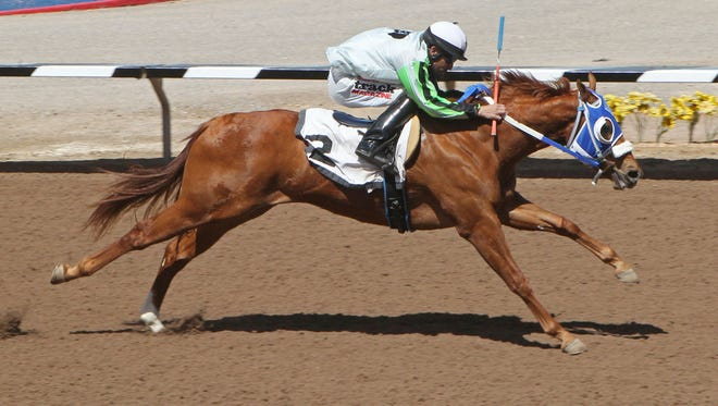 Suze Returns earned the top qualifying mark on Friday for next month's West Texas Futurity at Sunland Park Racetrack 7 Casino.