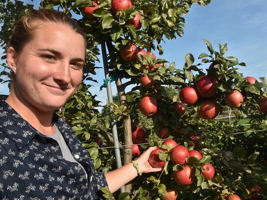 635809458500607743-DCA-1003-peninsular-apples-3