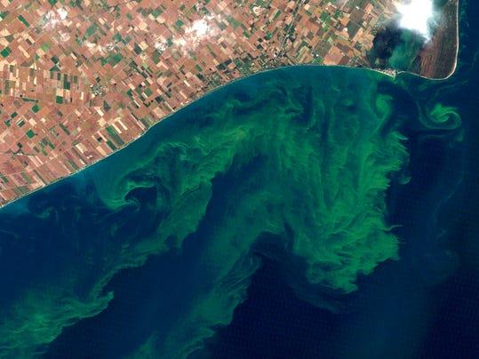 MNCO 0903 Dick Martin notes on algae bloom impact on fishing.jpg