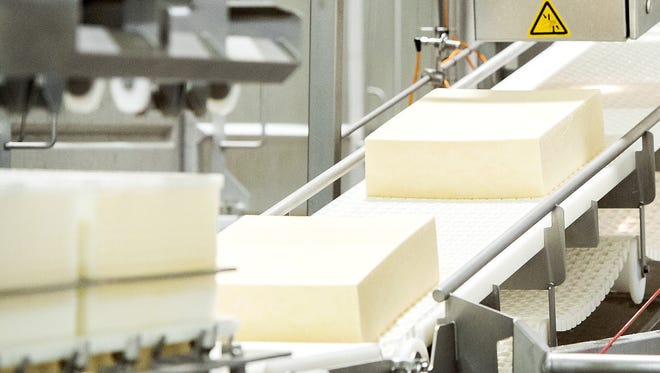 Cheese factory assembly line.