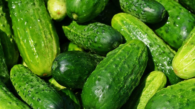 The new superfood is the cucmber.
