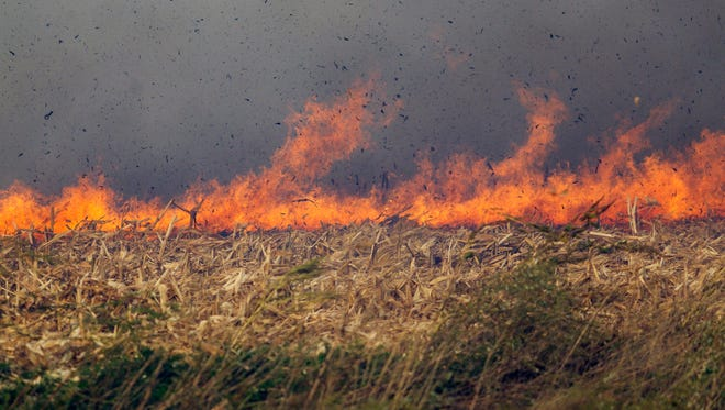 Fire rages through a corn field  near Eldridge, Iowa, on Monday, Oct. 12, 2015.