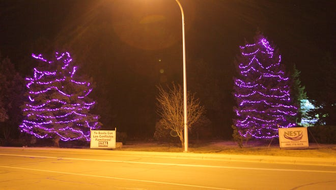 """Pictured is the DVAM display at the """"Y"""" at Highway 70 brought to you by HEAL and The Nest Domestic Violence Shelter and Ruidoso Parks and Recreation.  Picture"""