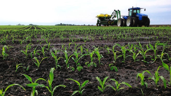 Based on the U.S. Department of Agriculture's yield forecast, and assuming that a small percentage of expected planted acreage isn't harvested in 2016, farmers would produce about 13.9 billion bushels of corn, the second-largest crop on record, and 3.8 billion bushels of soybeans, the third-biggest crop. Iowa produces more corn and soybeans than any other state.