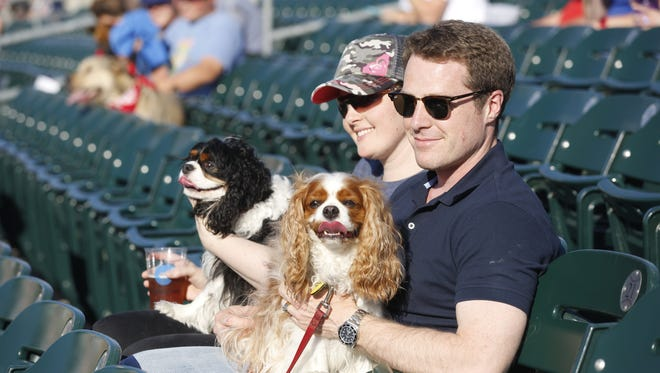 Evan Fahey, right, and Allison Anders, both of Des Moines, hold Fahey's dogs Dusty and Sky during Dog Days at Principal Park in Des Moines, Tuesday, May 24, 2016. The Animal Rescue League plans to hold another dog day later this summer on Aug. 9.