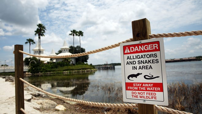 ORLANDO, FL - JUNE 18:  Newly installed signs warn of alligators and snakes on a closed section of beach following the death of a 2-year-old boy who was killed by an alligator near a Walt Disney World hotel on June 18, 2016 in Orlando, Florida. Lane Graves, who was visiting Disney World with his family from Nebraska, died after he was pulled into the lagoon by an alligator on Tuesday.  (Photo by Spencer Platt/Getty Images)