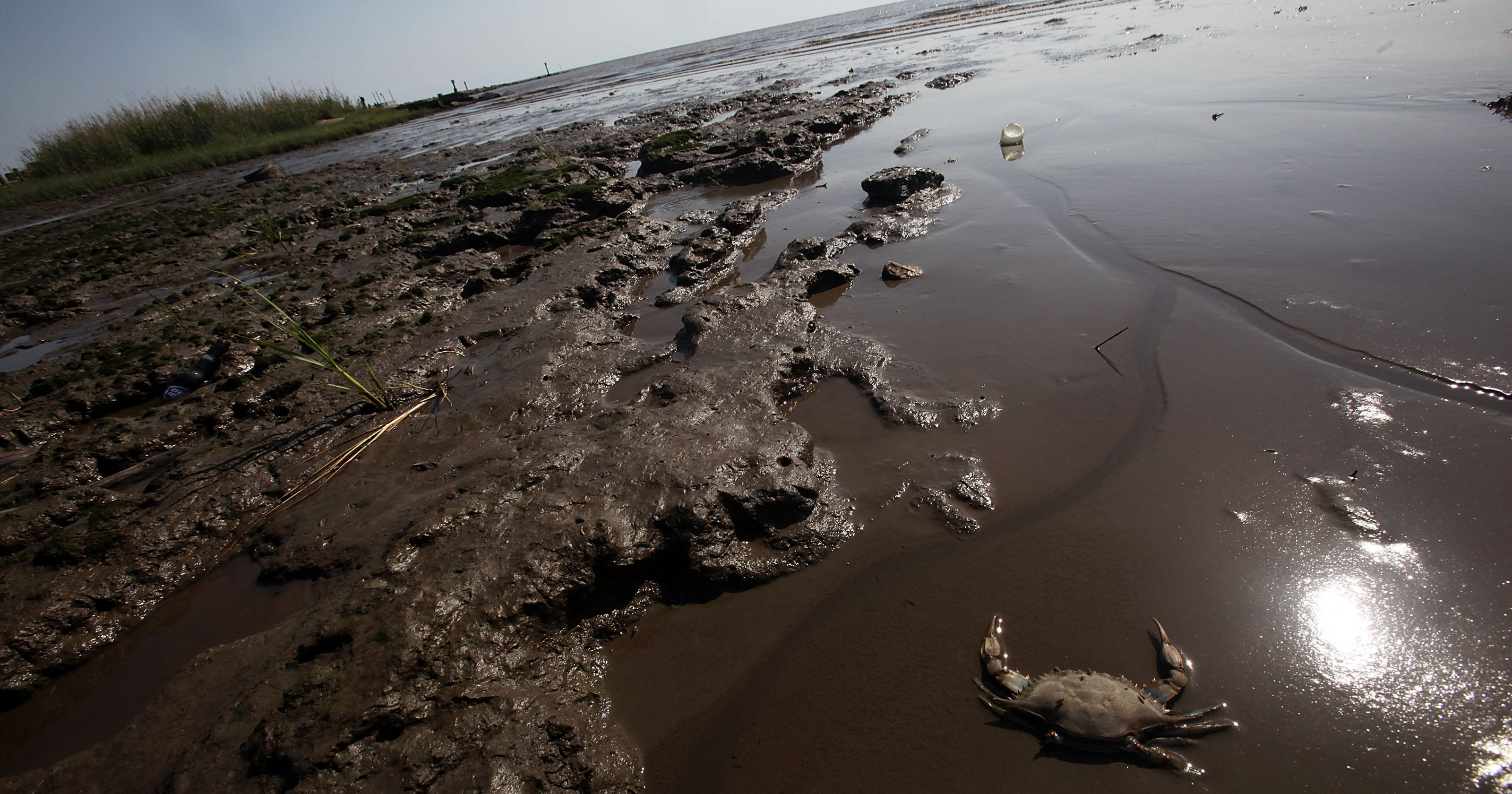 5 environmental consequences of oil spills thoughtco - HD3000×2001