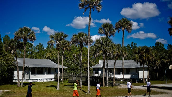 In the file photo, Swamp Boys make their way across the yard at AMIkids Big Cypress, passing their dorms after a group therapy session to play basketball. Unlike other residential juvenile detention programs, there are no fences or walls surrounding the property. What does surround the property is vast forests, swamps, and wildlife that inhabits the Big Cypress National Preserve. Escapes are rare, but have happened. According to former executive director Ron Boyce, teens that do escape become lost and unprepared for their surroundings that they ask for help back to the property.