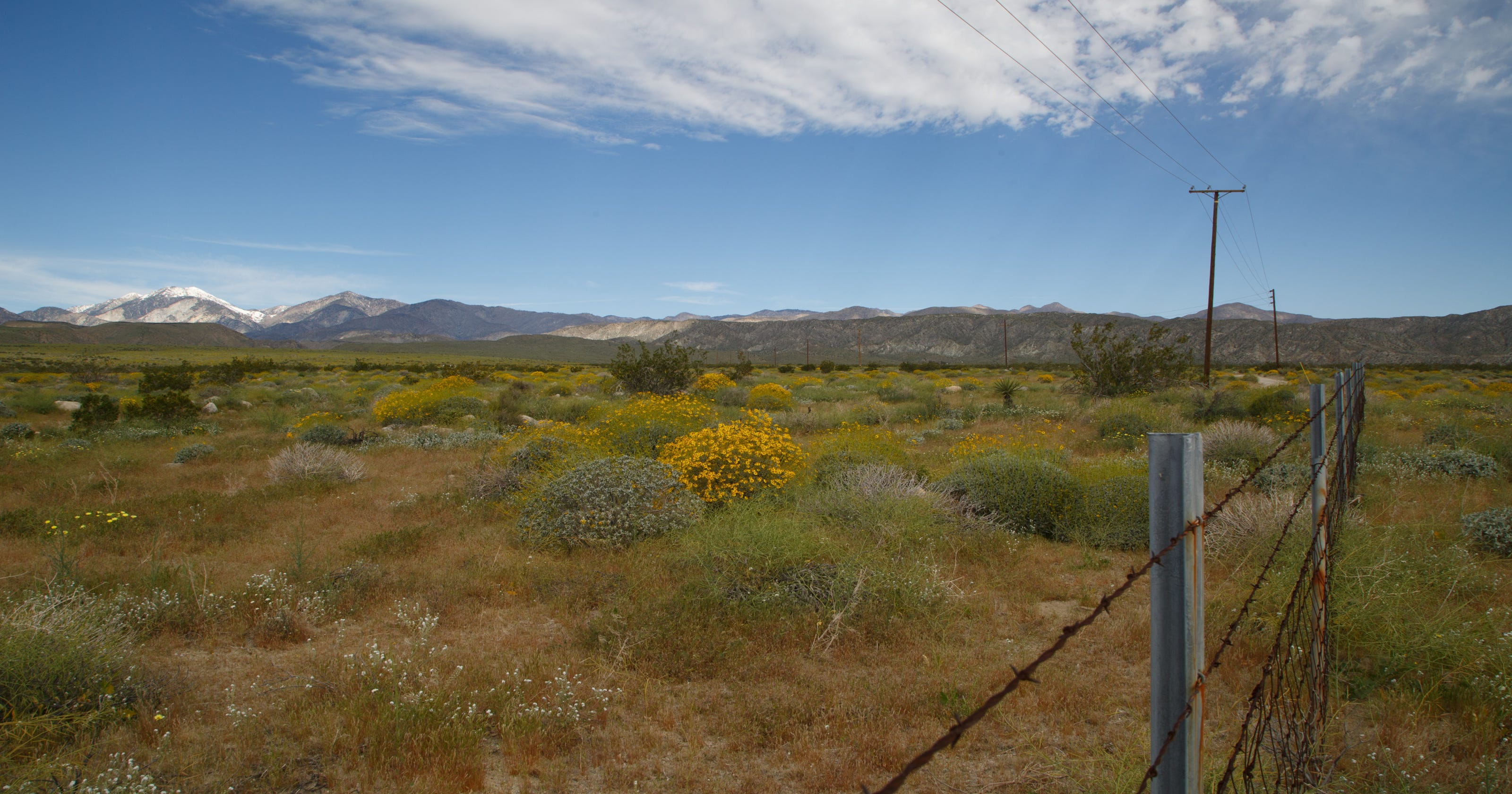 The Sierra Club and the Center for Biological Diversity