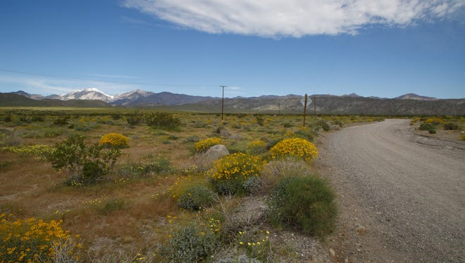 A homebuilder has proposed a 2,200-unit housing development on a parcel of land in Desert Hot Springs, shown here on Monday, March 20, 2017, that is adjacent to the Sand to Snow National Monument.