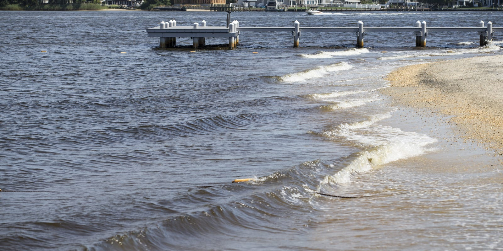 Jersey Shore beaches: 3 Ocean County beaches test high for