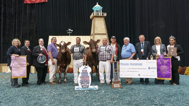 Eichlers MD Blanche-ET, owned by Peter Vail and Hillpoint Partners of Cross Plains, WI. was named Grand Champion Female in the International Milking Shorthorn Show. Elron Megadeth Waveland-EXP-ET, owned by Halie Gruenwald of Lost Nation, IA, was awarded Reserve Grand Champion Female.