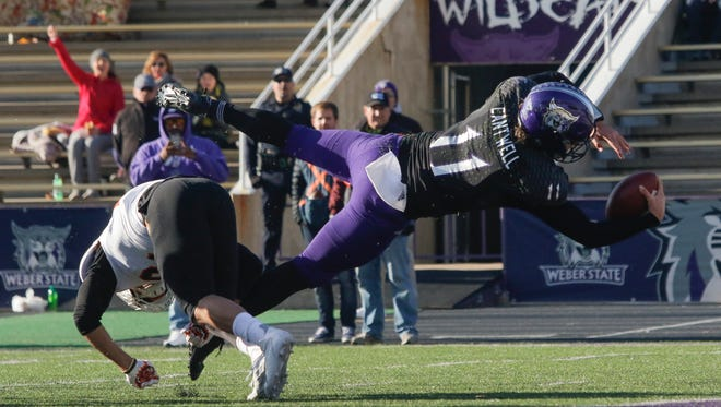 Weber State quarterback Stefan Cantwell (11) dives into the end zone scoring a touchdown during the the first half of an NCAA college football game against Idaho State on Saturday, Nov. 18, 2017 in Ogden, Utah. (Matt Herp/Standard-Examiner via AP)
