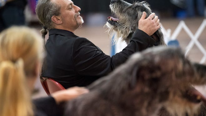 Chris Secular, of Horn Lake, Miss., pets his Irish Wolfhound, named UFO, on Saturday, March 24, 2018, during the Jackson Tennessee Dog Fanciers Association's 2018 all-breed dog show at Jackson Fairgrounds Park.