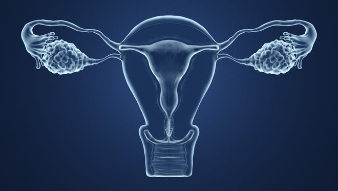 Researchers are building the framework to create an artificial ovary.