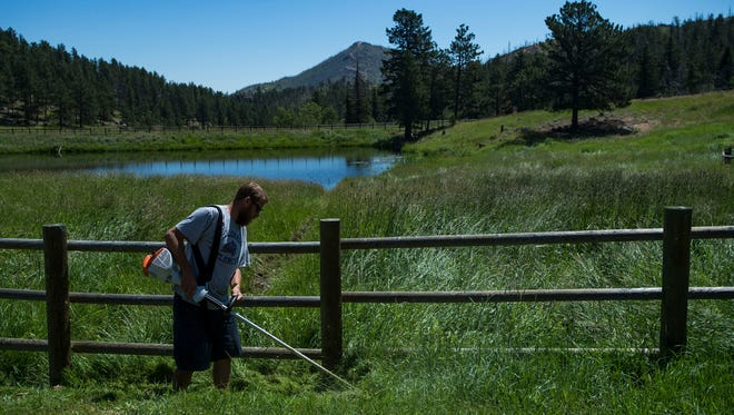 Facilities manager Russ Thompson takes a string trimmer to the grass growing near the pond on Friday, July 13, 2018, at the Sky Corral Ranch in Bellvue, Colo.
