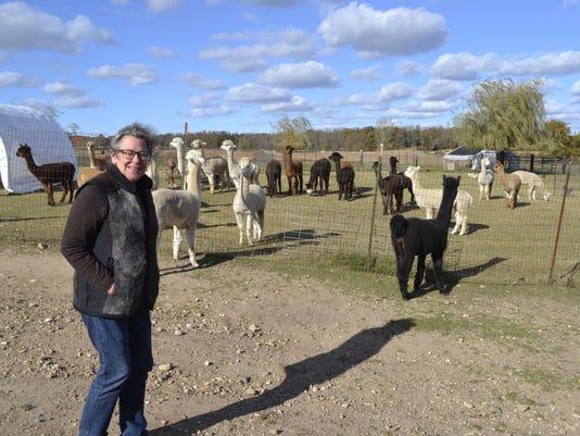 LeAnna Franklin on alpaca farm photo 1
