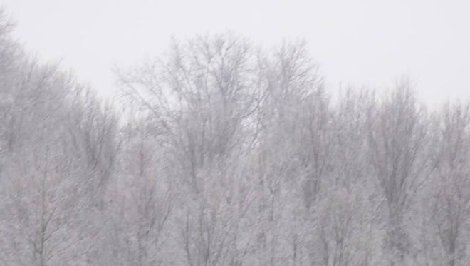 Miss. winter weather