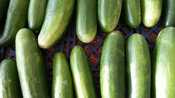 Pickle cucumbers are just one of many items you can find at the Lafayette Farmers and Artisans Market at the Horse Farm., which happens from 8 a.m. to noon every Saturday at Lafayette Central Park. This market is just one way you can celebrate National Farmers Market Week Aug. 2-8.
