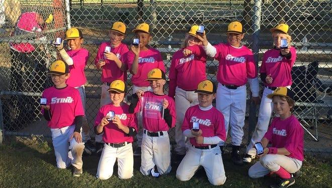 The Western North Carolina Sting 9U baseball team.