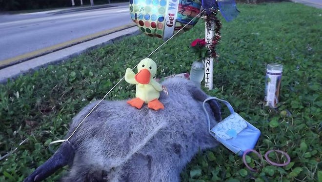 """Ricky"" the raccoon and his memorial outside Dixie Crossroads in Titusville."