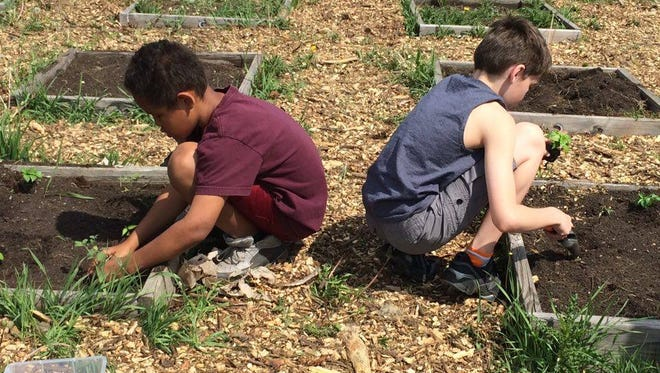Dylan and Clayton planting vegetables