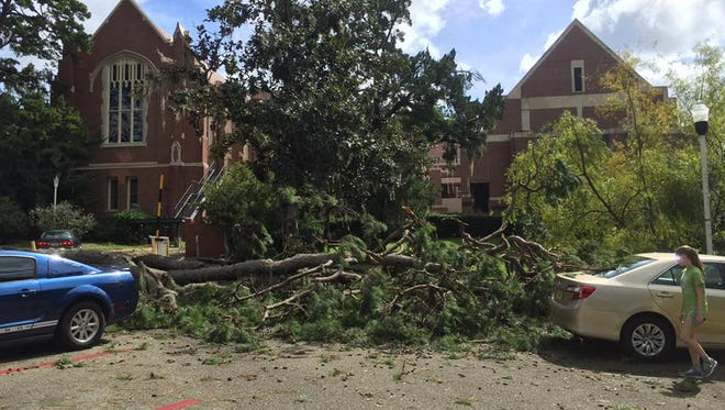 Hurricane Hermine swet through Tallahassee late Thursday and early Friday, leaving its mark on Florida State.