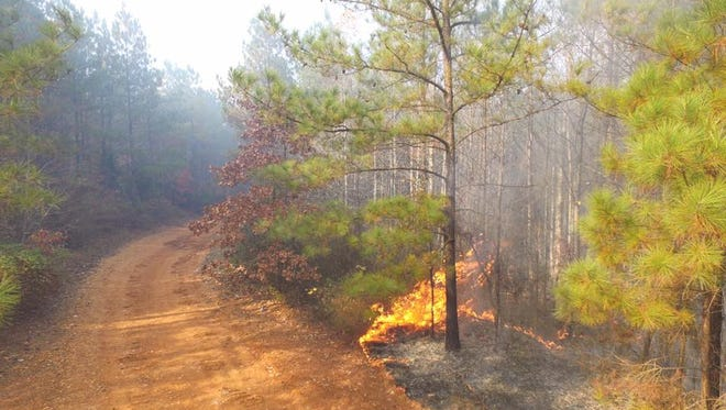 Hardin County Fire Department and the Tennessee Department of Forestry battled two fires in the same area Friday. The cause of the fires is believed to be arson, according to a Facebook post by the fire department.