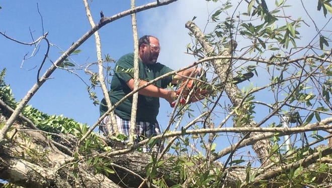 Jason Patzer works on some tree limbs after Hurricane Irma came through the area.
