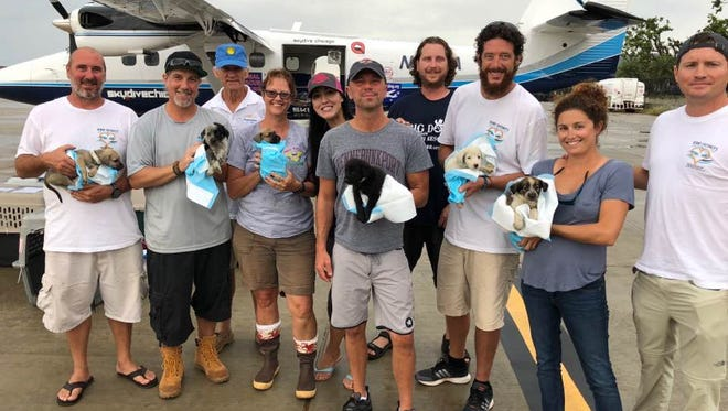 Kenny Chesney, center, with Eric Gaspard, Dave Anselmini, Jack O'Rourke, Jessica Nicodemo, Nick Barson, Keith Hanson, Lauren Saia, and John McInnis with six of the over 250 dogs and cats rescued from St. Thomas and St. John prior to transport to the U.S. to be reunited with owners or adopted.