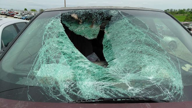A wild turkey flying across U.S. 60 near the James River bridge smashed through the windshield of a van driven by Vicki Wood.