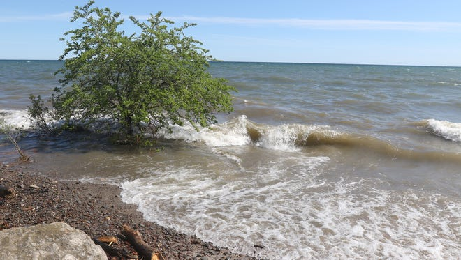 THE PHOTO:  A tree, at Beatty Beach, is surrounded by Lake Ontario.  FROM TINA:  Sometimes simplicity says it all.  In this case it certainly does.  A tree clearly several inches in water with waves breaking around and past it speaks of how Lake Ontario is.