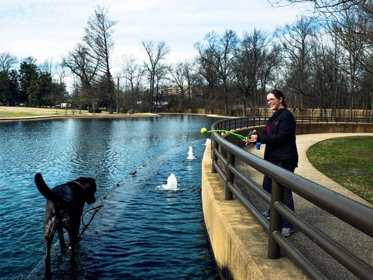 Brittany Cooper plays with her dog, Abbey, at Rainbow Lake in Overton Park in 2016.