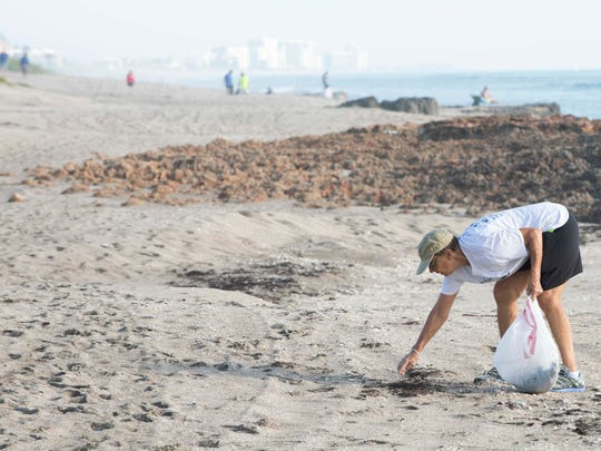 The Citizens for Clean Water (C4CW) Beach Cleanup is Saturday at Stuart Beach. This was taken during Stuart Sunrise Rotary Club's beach cleanup on June 9 near the House of Refuge Museum.