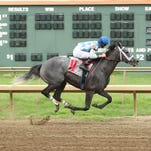 Haunted Heroine, under Brian Hernandez, won Saturday's Ellis Park Turf Stakes.