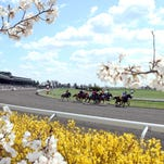 Keeneland, here in April 2014, has installed a dirt track in time to host the Breeders' Cup later this year.