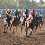 Firing Line, ridden by Hall of Famer Gary Stevens, exploded through the stretch on his way to a 14 1/4-length romp in the $800,000 Sunland Derby.
