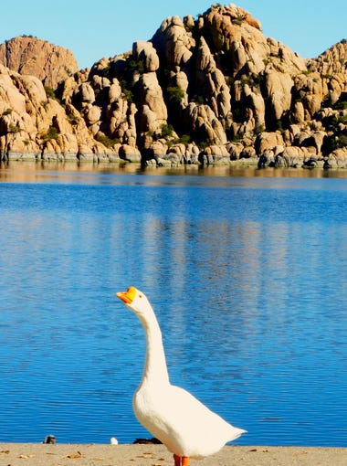 Watson Lake is nestled amid the Granite Dells, a tawny collection of massive boulders.
