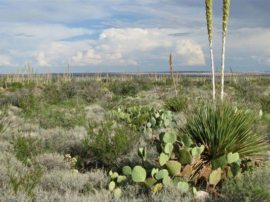 636269268114029808-Chihuahuan-Desert.jpg