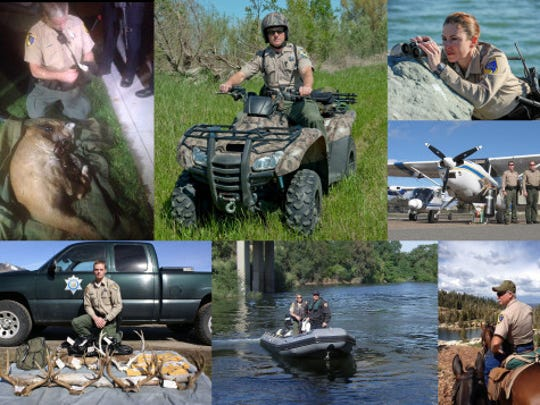 Wildlife Officers have a passion to protect California's fish and wildlife resources while patrolling in 4×4 trucks, boats of all sizes, ATVs, and even horseback and personal watercraft. Most Wildlife Officers think spending a career outside in California's wild places beats pretty much any other career out there.