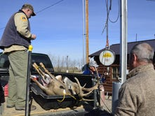 High temps, good harvest marks first weekend of rifle season