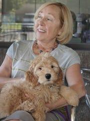 Joanne McSAhane and Phoebe, her 10-week-old Labradoodle